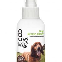 CBD Dog Breath Spray